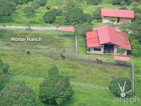 Hacienda Binay horse ranch