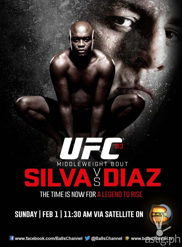 Anderson Silva vs Nick Diaz in UFC 183