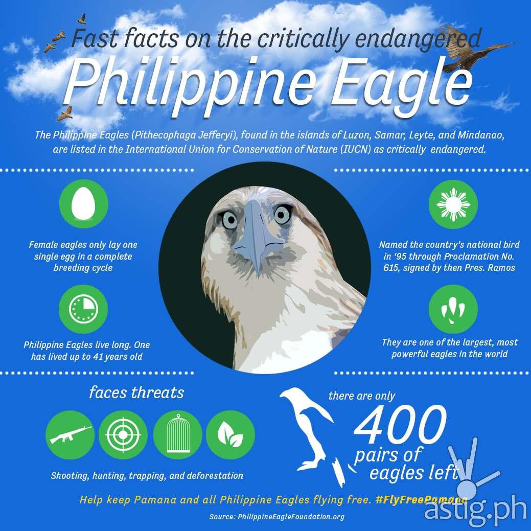 Globe Telecom Pamana Philippine Eagle