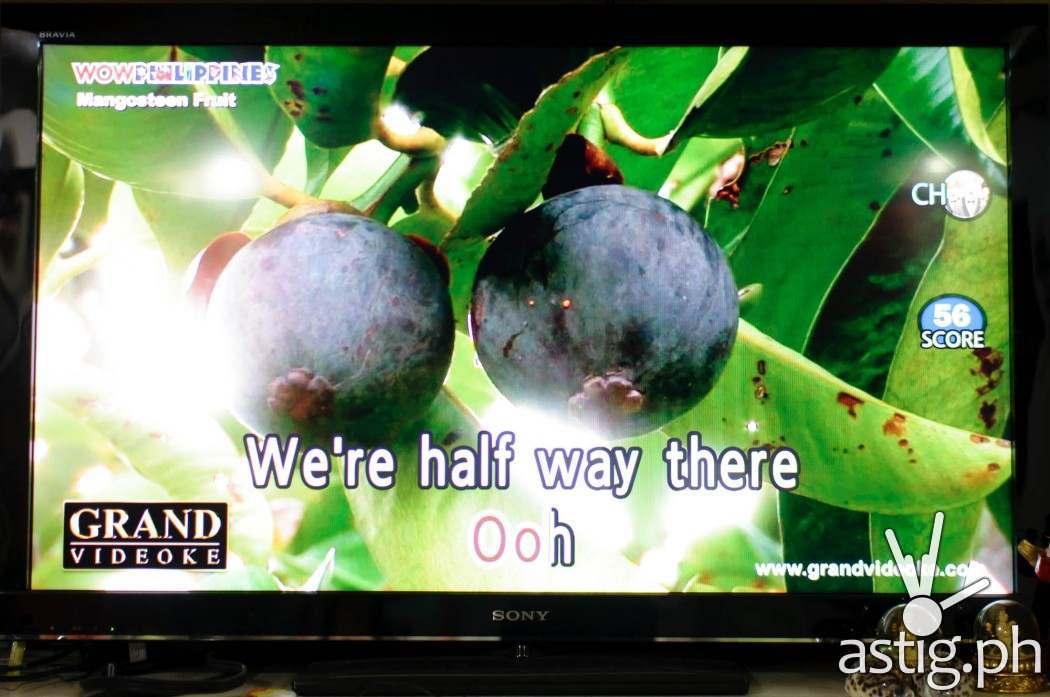 Nature background video on the GRAND VIDEOKE Symphony 2.0