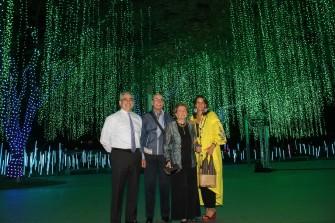 Festival of lights greet the Yuletide season at Ayala Triangle Gardens