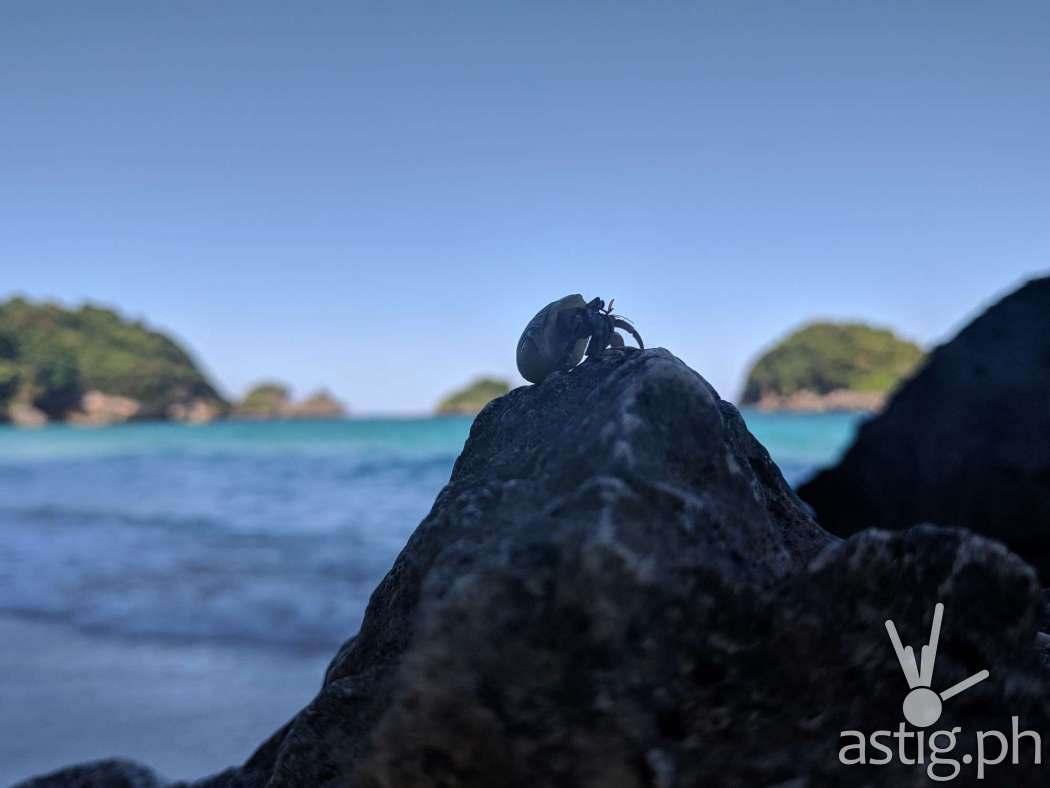 Boracay Philippines re-opening smartphone photo - ASUS ZenFone 5 by Den Uy of TechKuya