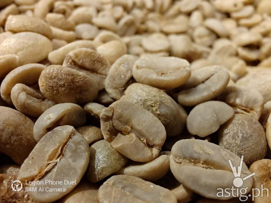 Coffee beans macro sample photo - Legion Phone Duel (Philippines)
