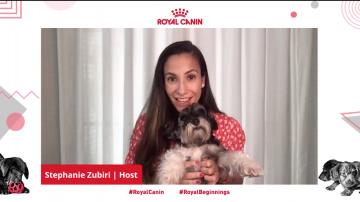 Royal Canin Puppy Webinar - Steph Zubiri and Pepper